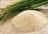 خواص داروییبرنج rice