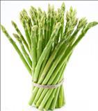 خواص داروییمارچوبه asparagus