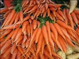خواص داروییهویج carrot