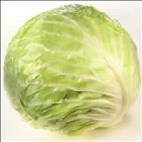 خواص داروییکلم cabbage