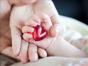 بهترین مرکز انجام اکوکاردیوگرافی جنین شیراز