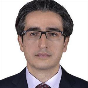 دکتر محمدمهدی حاتمی