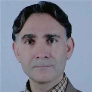 دکتر سید هادی حسینی