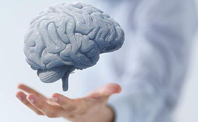 بهترین مواد غذایی برای سلامت مغز