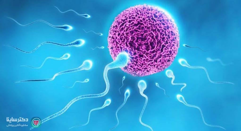 امکان بارداری در سكس مقعدي از طریق منی  رابطه جنسی مقعدی